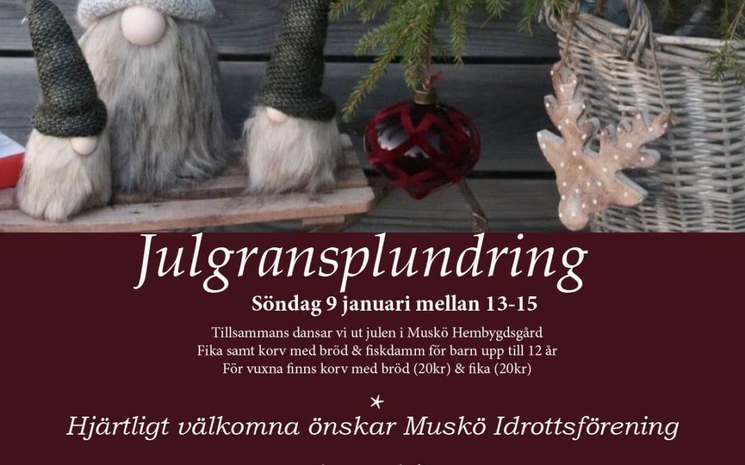 Julgransplundring söndag 9 januari